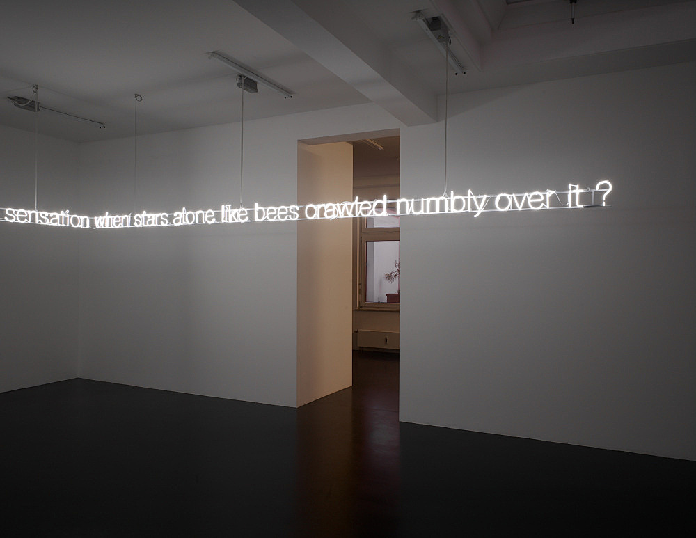 """Cerith Wyn Evans – """"…rinsed with mercury throughout to this bespattered fruit of reflection, rife with distortion (each other, clouds and trees). what made a mirror flout its flat convention? surfacing as a solid… and what was the sensation when stars alone like bees crawled numbly over it?"""", 2009 white neon 25 meter length, letter height approx. 15,5 cm x 11,3 cm, diameter 1 cm """"Permit yourself…"""" installation view Galerie Daniel Buchholz, Elisenstraße 4-6, 2009"""