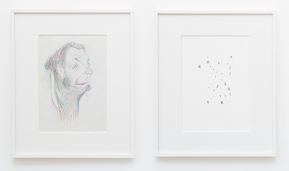 """Cheyney Thompson – """"Robert Macaire"""", 2009 colour pencil on paper 45 x 37 cm & Untitled, 2009 ink on paper, framed 45 x 37 cm"""