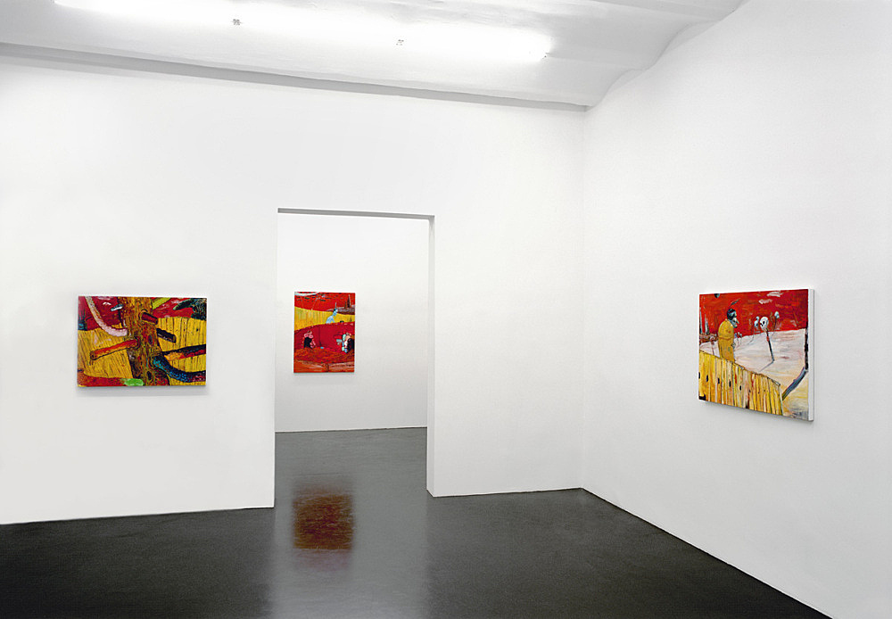 Richard Hawkins – installation view Galerie Daniel Buchholz, Köln 2004