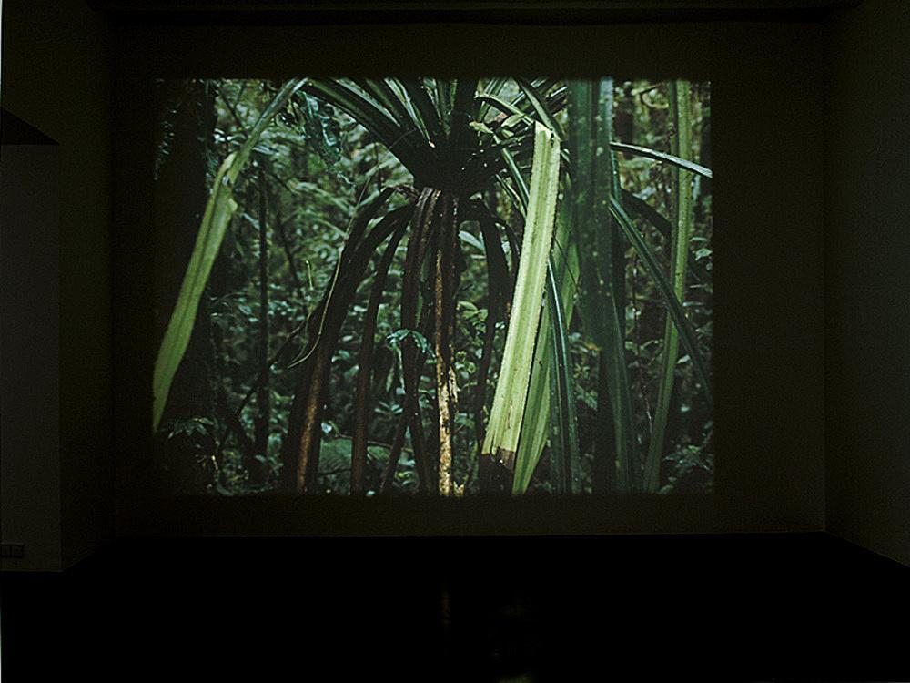 "Mathias Poledna – ""Crystal Palace"", 2006 35mm film, colour, sound, 28′ installation view, Galerie Daniel Buchholz, Köln 2007"