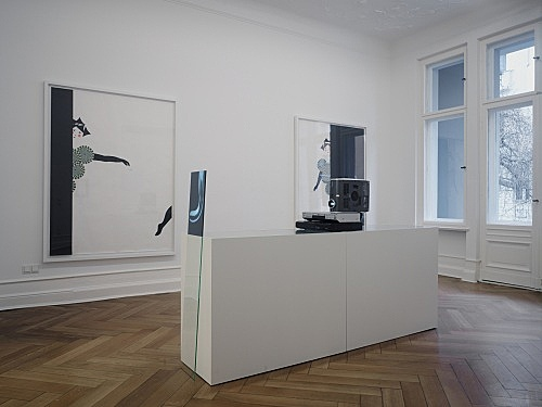 "Mark Leckey, Frances Stark – ""and possibly but not certainly Mark Leckey and Frances Stark"" installation view Galerie Daniel Buchholz, Berlin 2009"