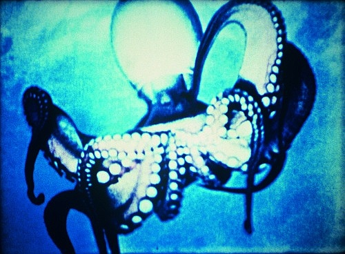 "Jack Goldstein – ""Under Water Sea Fantasy"", 1983/2003 16mm film, colour, sound 6' 30'', filmstill"