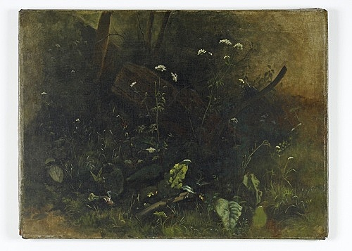 "Johann Sperl – ""Pflanzen am Wegesrand"" oil on canvas 54 x 72 cm"