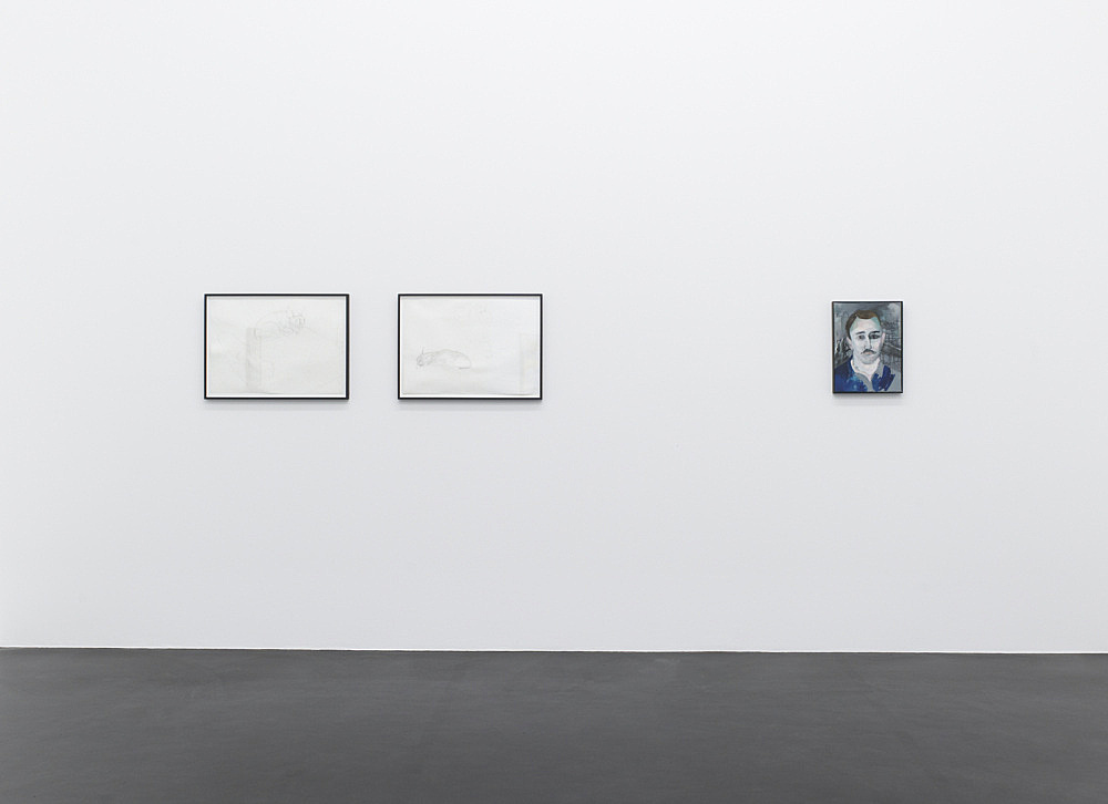 "Katharina Wulff – ""Allô allô mein Hitlir, you na3se?"" installation view Galerie Daniel Buchholz, Köln 2010"