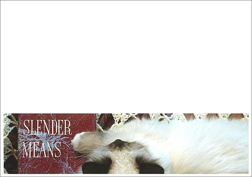 """""""Slender Means"""""""