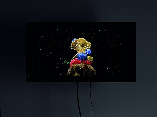 "Mark Leckey – ""This Thing In Regent's Park"", 2007 DVD, 8'47"" installation view Galerie Daniel Buchholz, Köln 2007"