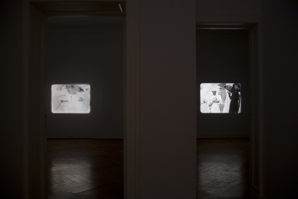 "Tony Conrad – ""Re-Framing Creatures"" installation view Galerie Daniel Buchholz, Berlin 2009"