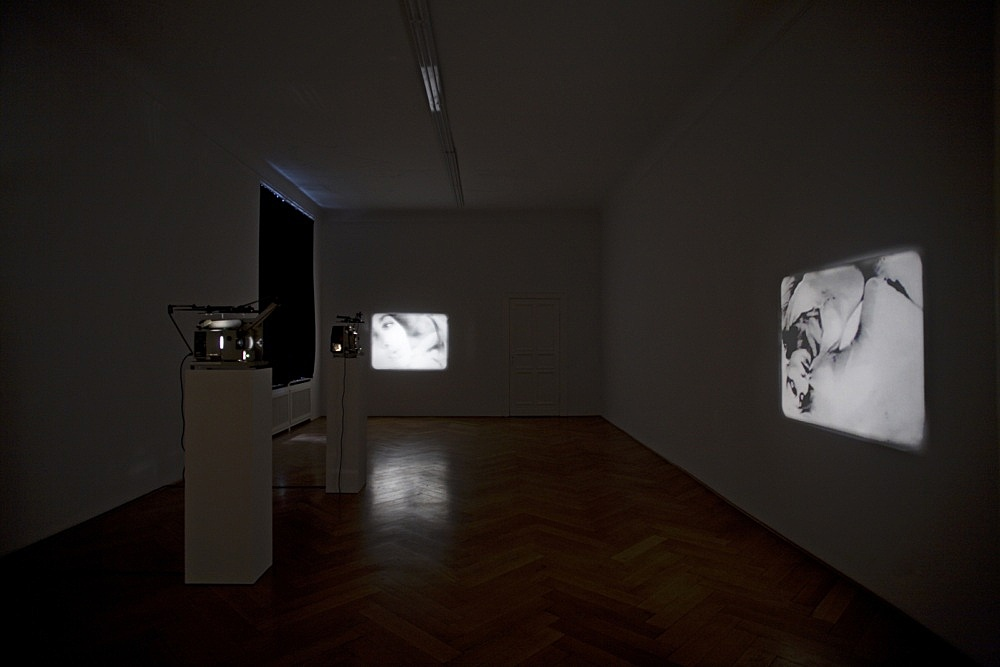 "Tony Conrad – ""Re-Framing Creatures"", 1963-2009 two of five 16-mm loops, I.: 2' 15'', II.: 2' 22'' installation view Galerie Daniel Buchholz, Berlin 2009"