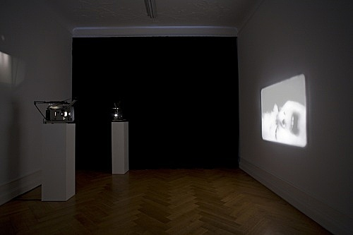 "Tony Conrad – ""Re-Framing Creatures"", 1963-2009 one of five 16-mm loops, IV.: 1' 59'' installation view Galerie Daniel Buchholz, Berlin 2009"