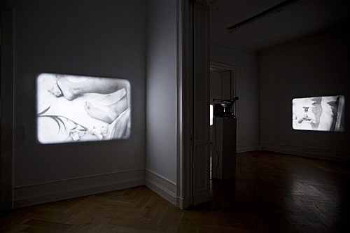 "Tony Conrad – ""Re-Framing Creatures"", 1963-2009 two of five 16-mm loops V.: 5' 04'', III.: 2' 52'' installation view Galerie Daniel Buchholz, Berlin 2009"