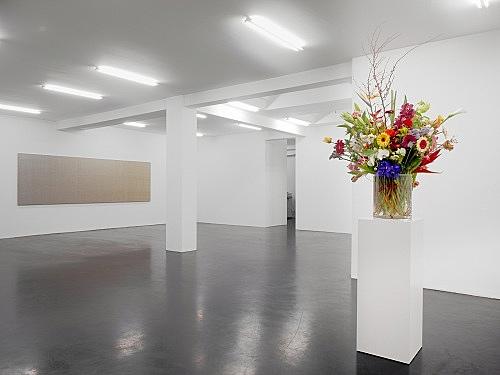 "Willem de Rooij – ""Slit or Gloved"" installation view Galerie Daniel Buchholz, Köln 2010"