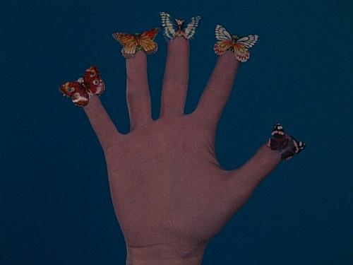 "Jack Goldstein – ""A Set of ten 16mm-films"", 1974-1978 ""Some Butterflies"",1975 16mm, color, silent, 30'' filmstill"