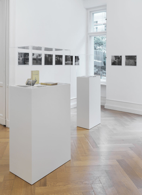 """– """"The President of the Republic of Dreams"""" curated by François Piron installation view Galerie Buchholz, Berlin 2013"""