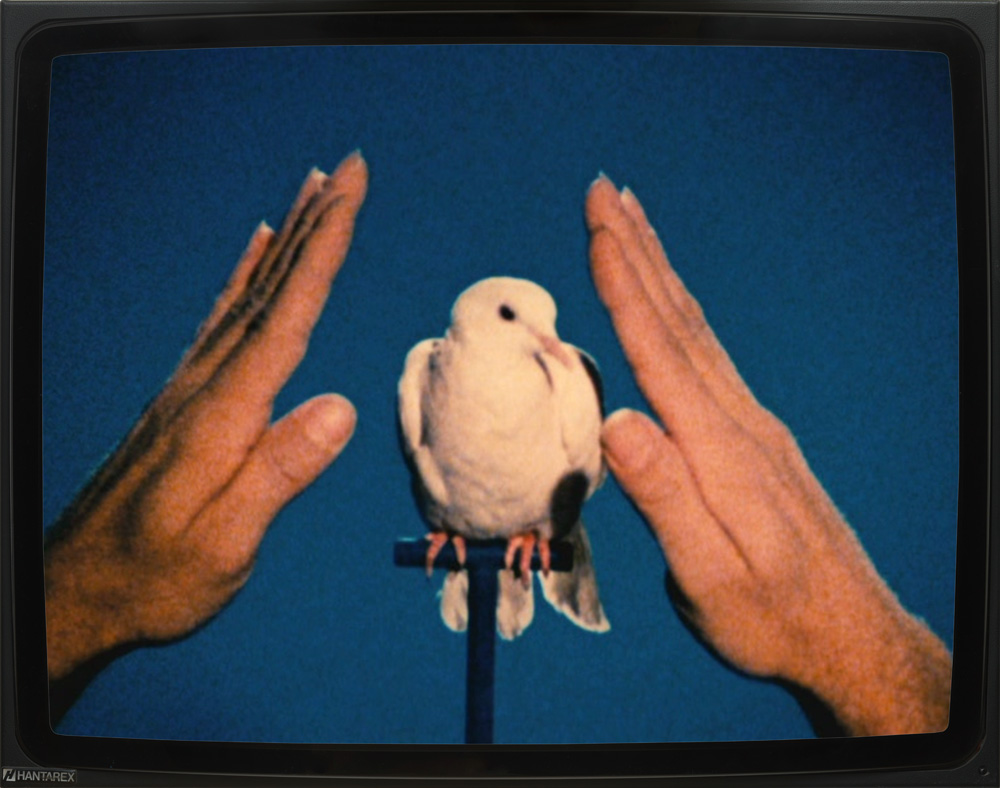 Jack Goldstein – Set of Ten Films 1. The Portrait of Pere Tanguy 1974, 16mm, color, 4' 2. White Dove 1975, 16mm, color, 20'' 3. The Knife 1975, 16mm, color, silent, 4' 4. Shane 1975, 16mm, color, sound, 3' 5. A Ballet Shoe 1975, 16mm, color, silent, 19'' 6. The Chair 1975, 16mm, color, silent, 5' 7. Some Butterflies 1975, 16mm, color, silent, 30'' 8. Metro-Goldwyn-Mayer 1975, 16mm, color, sound, 2' 9. Bone China 1976, 16mm, color, sound, 2' 30'' 10. The Jump 1978, 16mm, color, silent, 26'' DVD