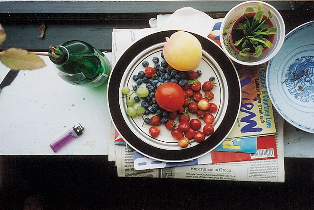 """Wolfgang Tillmans – """"summer still-life"""", 1995 c-print 30,5 x 40,6 cm"""