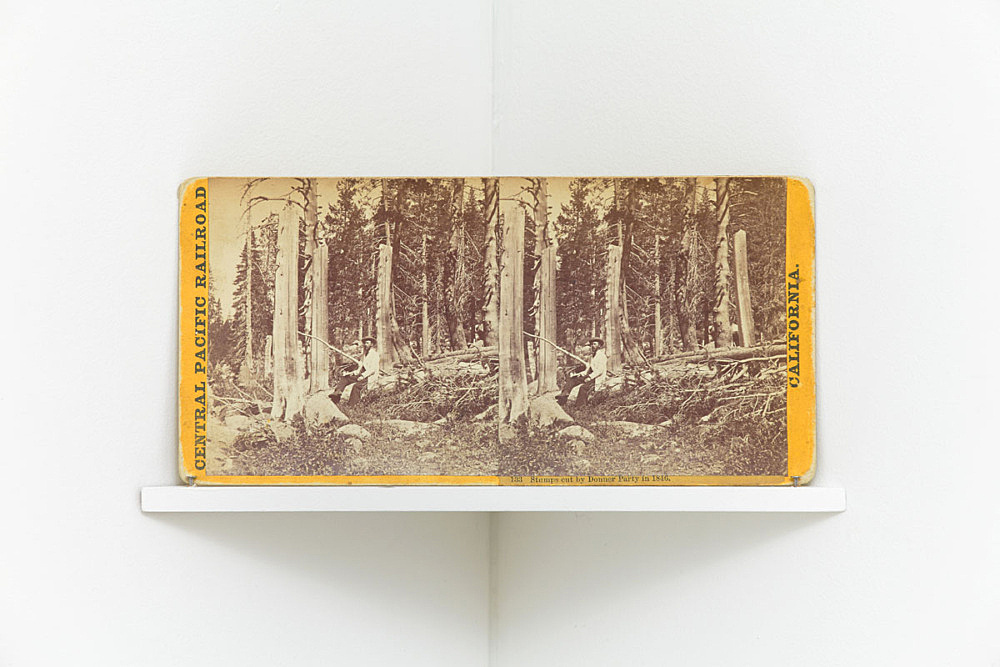 """Alfred A. Hart – """"Stumps cut by Donner Party in 1846"""", c. 1868 from the series """"Central Pacific Railroad"""" stereograph 8.5 x 17 cm"""