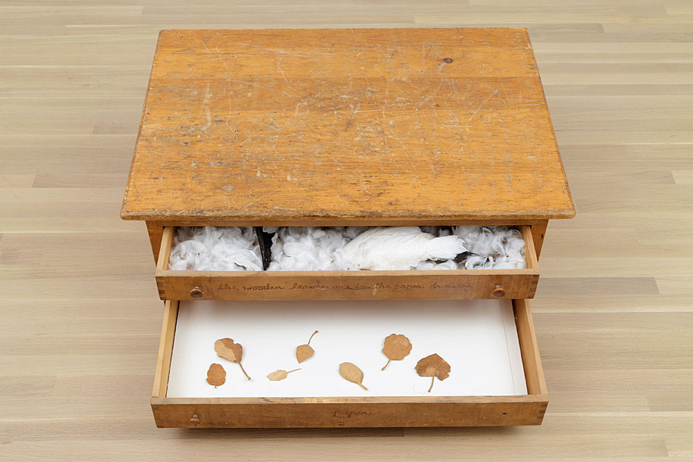 """Robert Kinmont – """"Watercolor chest of drawers"""", 1972-73 pine, wings, feathers and paper 38 x 101 x 70.5 cm installation view Galerie Buchholz, New York 2015"""