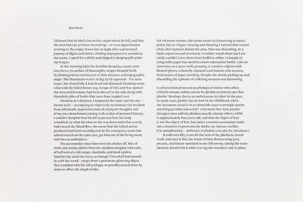 "Julie Ault – ""afterlife"", 2014 – 2015 ""Ipso Facto"""