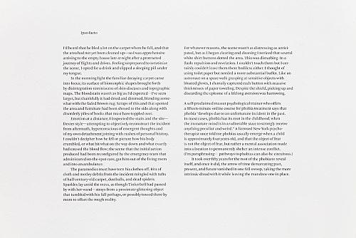 "Julie Ault – ""afterlife"", 2014 - 2015 ""Ipso Facto"""