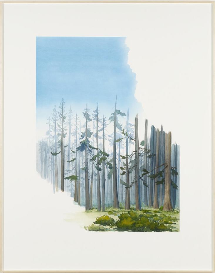 "Mathias Poledna – ""Untitled (Animation Forest)"", 2013 archival pigment print on cotton rag paper 177.8 x 140.3 cm"