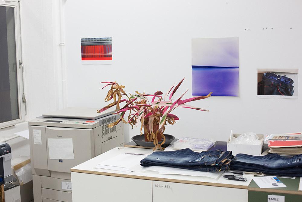 """Wolfgang Tillmans – """"Plant life, c"""", 2013 inkjet print mounted on Dibond in artist's frame 145 x 211 x 6 cm"""