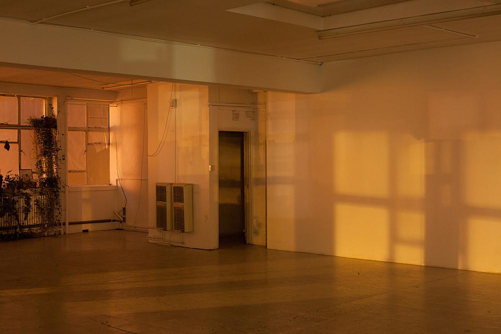 "Wolfgang Tillmans – ""Filled with Light, a"", 2011 inkjet print mounted on Dibond in artist's frame 171 x 252 x 6 cm"