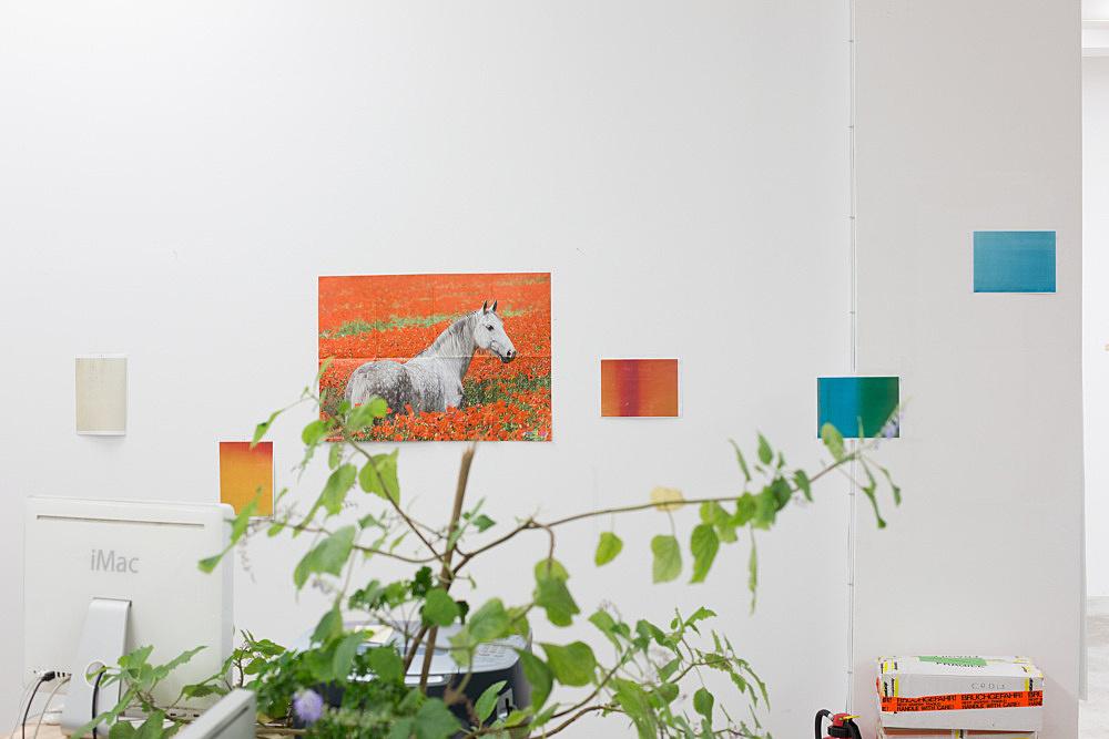 "Wolfgang Tillmans – ""Silver Medi Zini"", 2013 unframed inkjet print on paper, clips 138 x 208 cm"