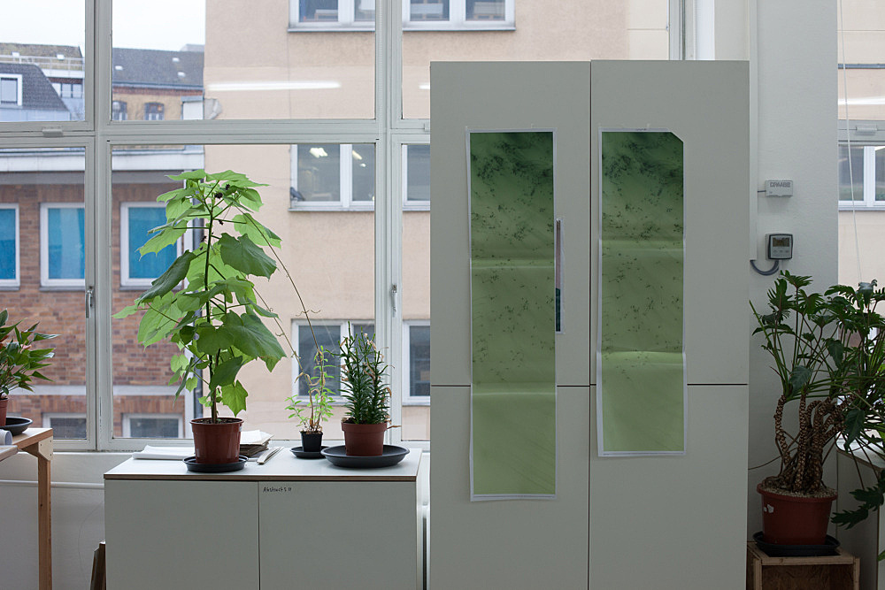"""Wolfgang Tillmans – """"Plant life, b"""", 2011 unframed inkjet print on paper, clips 138 x 208 cm"""