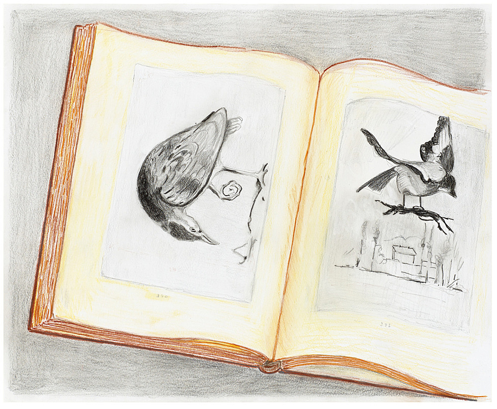 "Mayo Thompson – ""Two Pages from 'Das Beispiel Courbet' Louis Aragon"", 2016 coloured pencil on paper 43.5 x 35 cm"