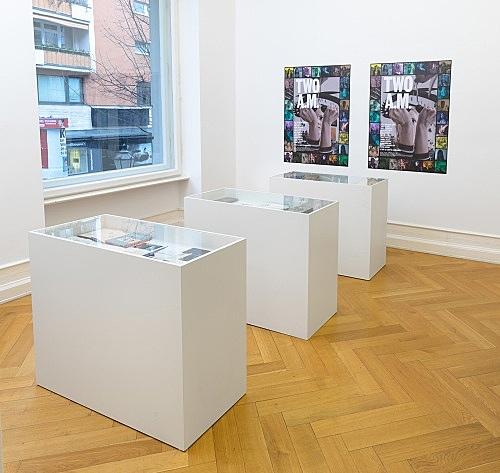 Loretta Fahrenholz – installation view Galerie Buchholz, Berlin 2017