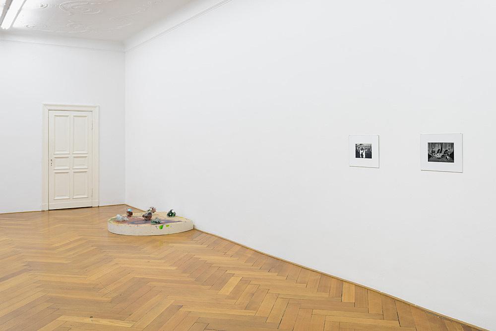 Hervé Guibert, Lutz Bacher – installation view Galerie Buchholz, Berlin 2017