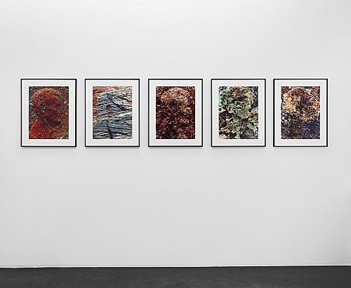 Moyra Davey – Empties installation view Galerie Buchholz, Köln 2017