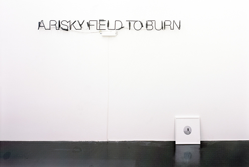 David Lieske – installation view Galerie Daniel Buchholz, Köln 2004