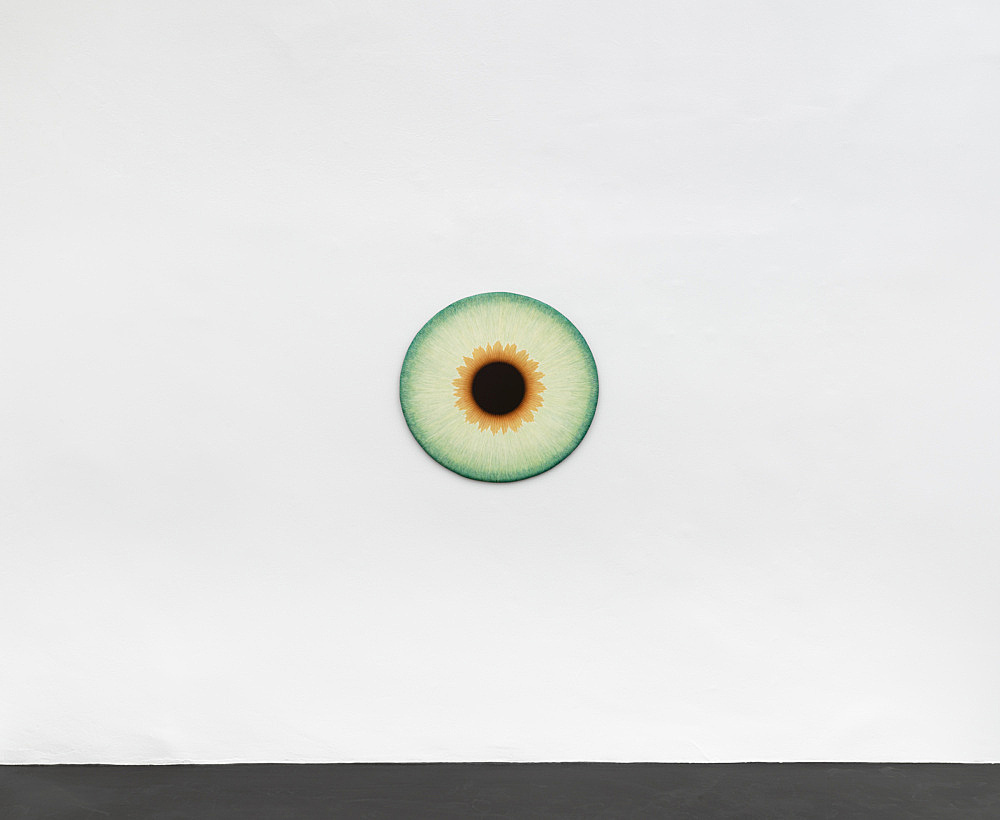 "Ulla Wiggen – ""Iris XI"", 2019 acrylic on panel 73 x 76 cm installation view Galerie Buchholz, Köln 2020"
