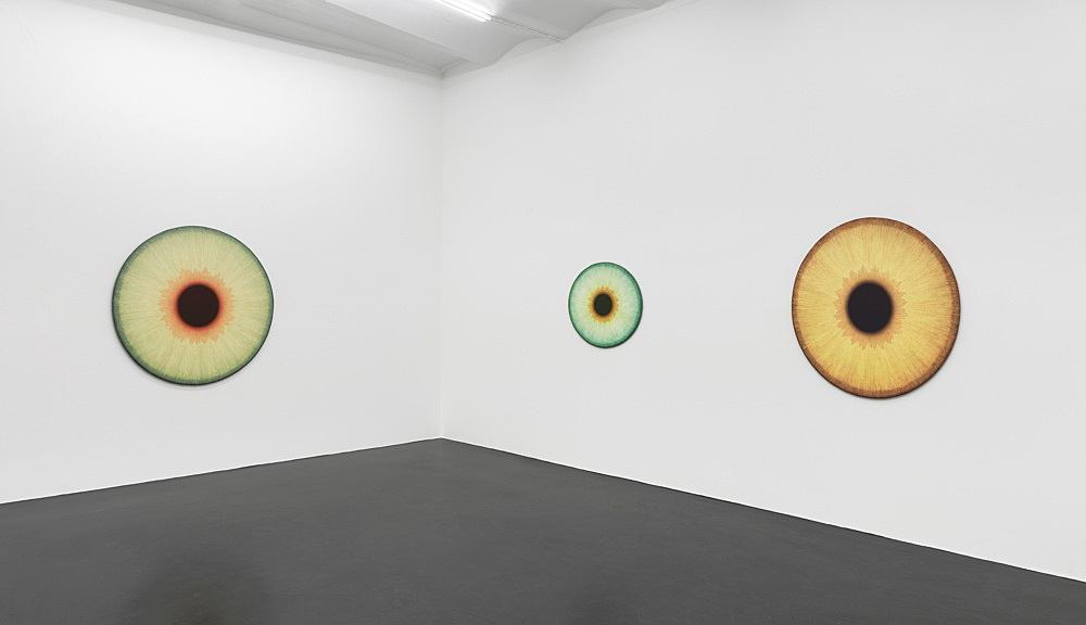 Ulla Wiggen – Visualities installation view Galerie Buchholz, Köln 2020