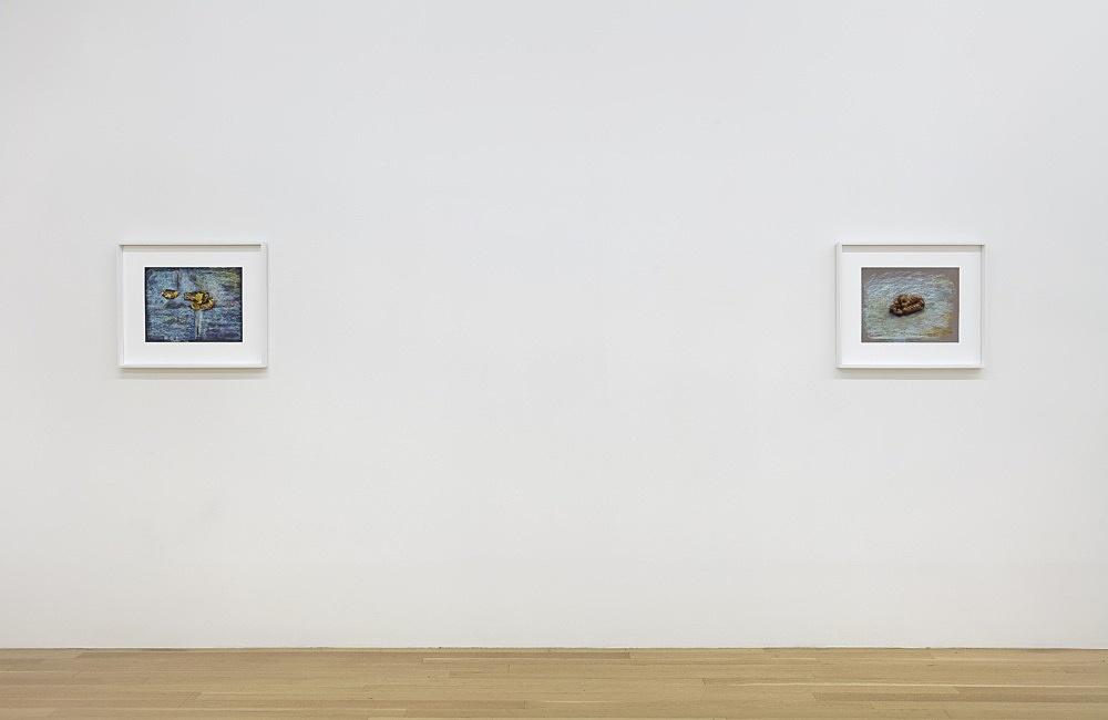 John Kelsey – Enigma 2, 2021 pastel on paper in artist's frame 50 x 60 cm  Enigma 3, 2021 pastel on paper in artist's frame 50 x 60 cm  installation view Galerie Buchholz, New York 2021